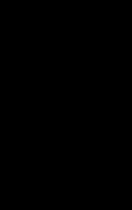 Black palm leaf